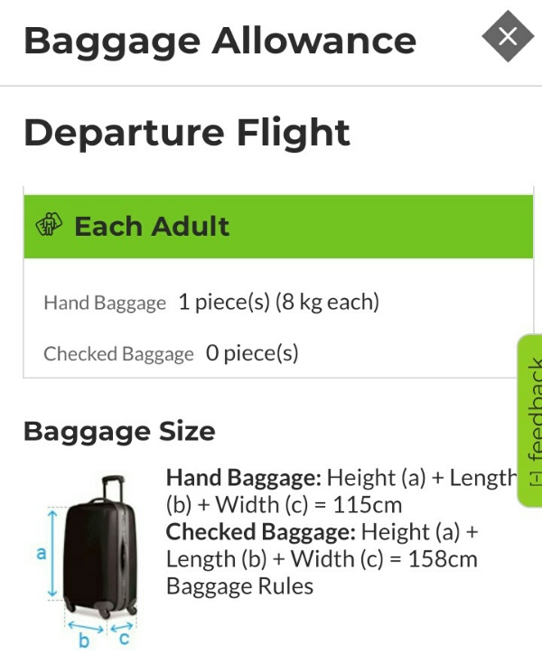 TAPポルトガル航空荷物規定確認